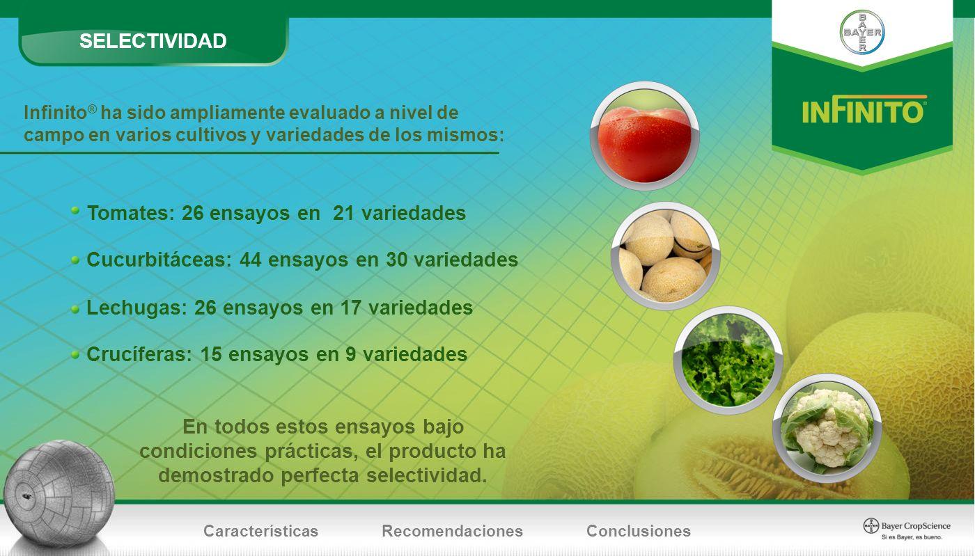 Tomates: 26 ensayos en 21 variedades