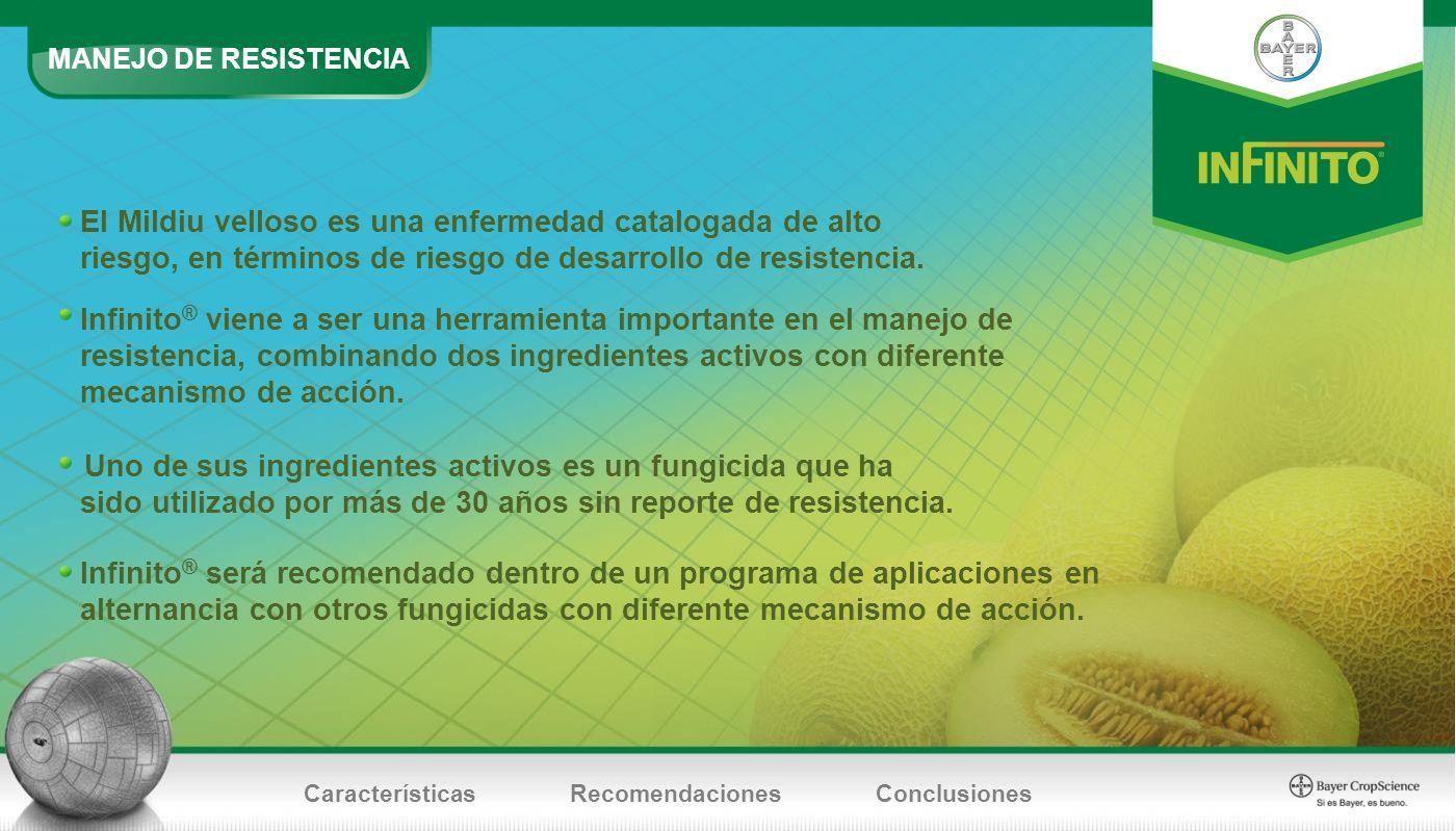 MANEJO DE RESISTENCIA El Mildiu velloso es una enfermedad catalogada de alto riesgo, en términos de riesgo de desarrollo de resistencia.