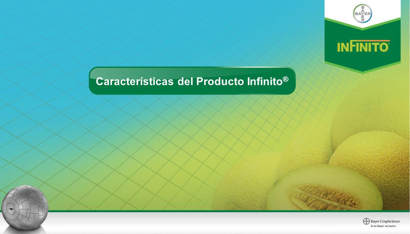 Características del Producto Infinito®