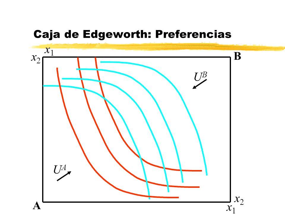 Caja de Edgeworth: Preferencias
