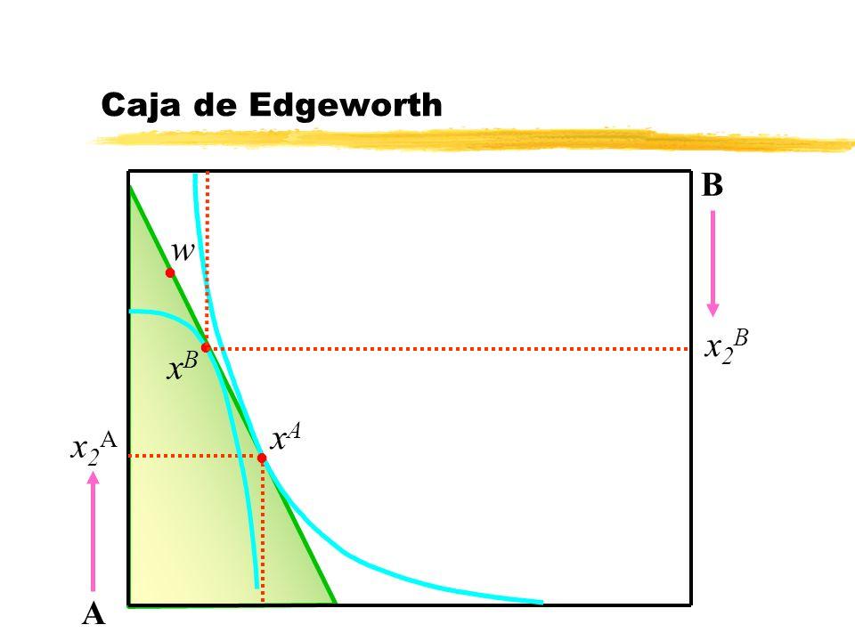 Caja de Edgeworth B w x2B xB xA x2A A