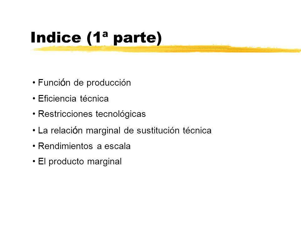 Indice (1ª parte) Función de producción Eficiencia técnica