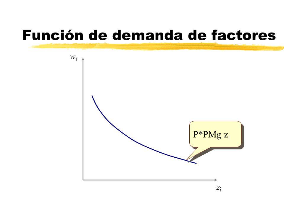 Función de demanda de factores