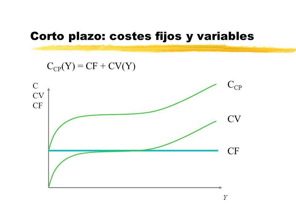 Corto plazo: costes fijos y variables