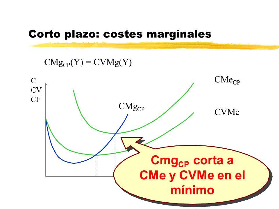Corto plazo: costes marginales