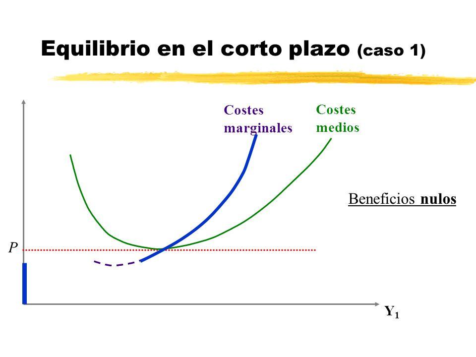 Equilibrio en el corto plazo (caso 1)