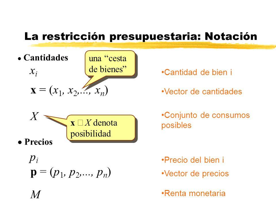 La restricción presupuestaria: Notación