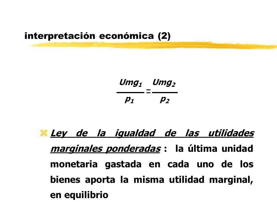 interpretación económica (2)