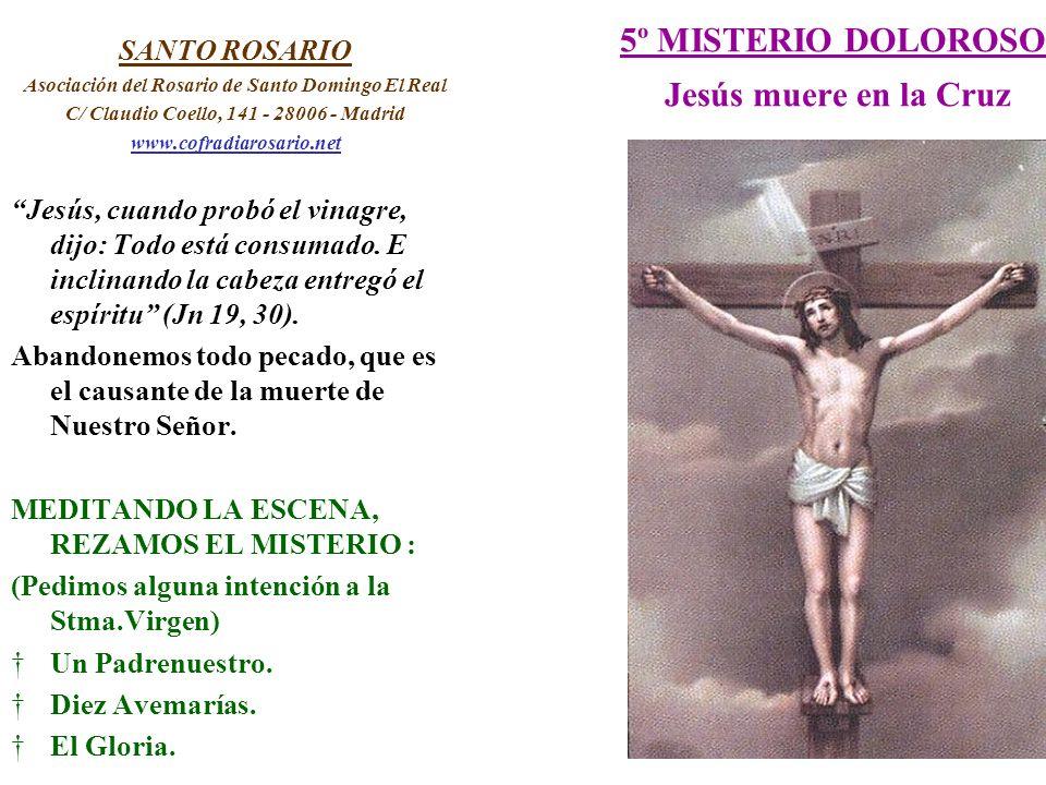 5º MISTERIO DOLOROSO Jesús muere en la Cruz