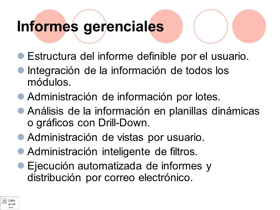 Informes gerenciales Estructura del informe definible por el usuario.