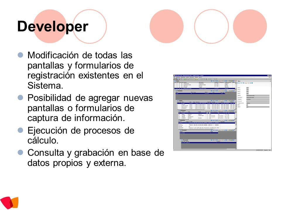 Developer Modificación de todas las pantallas y formularios de registración existentes en el Sistema.