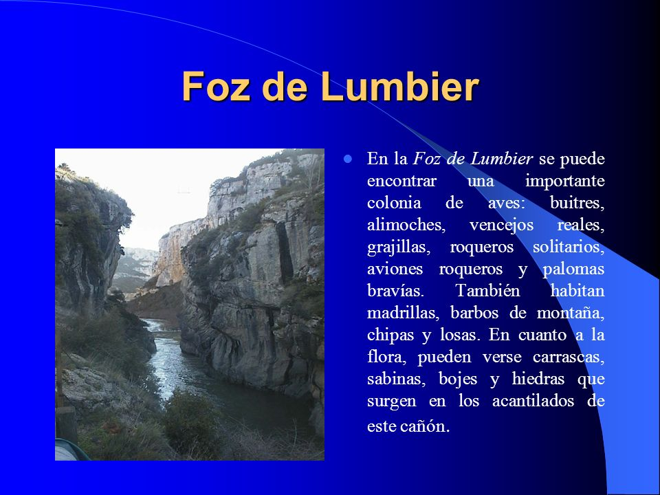 Foz de Lumbier