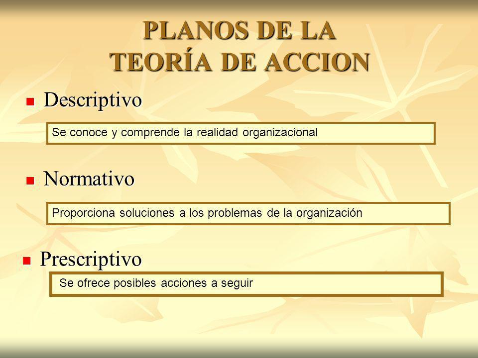 PLANOS DE LA TEORÍA DE ACCION