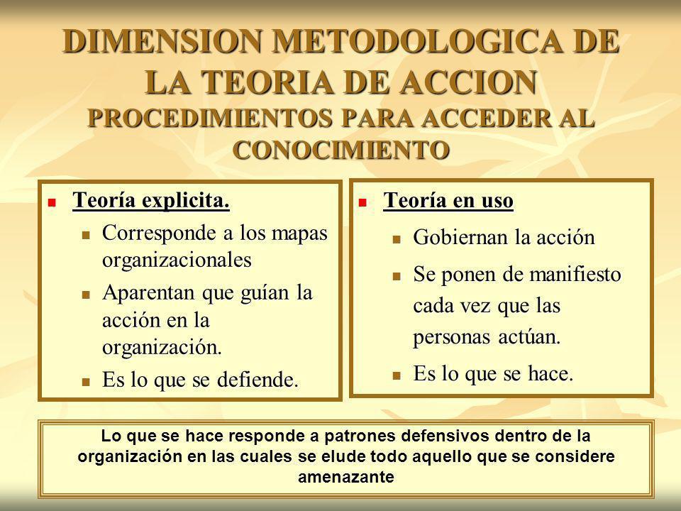 DIMENSION METODOLOGICA DE LA TEORIA DE ACCION PROCEDIMIENTOS PARA ACCEDER AL CONOCIMIENTO