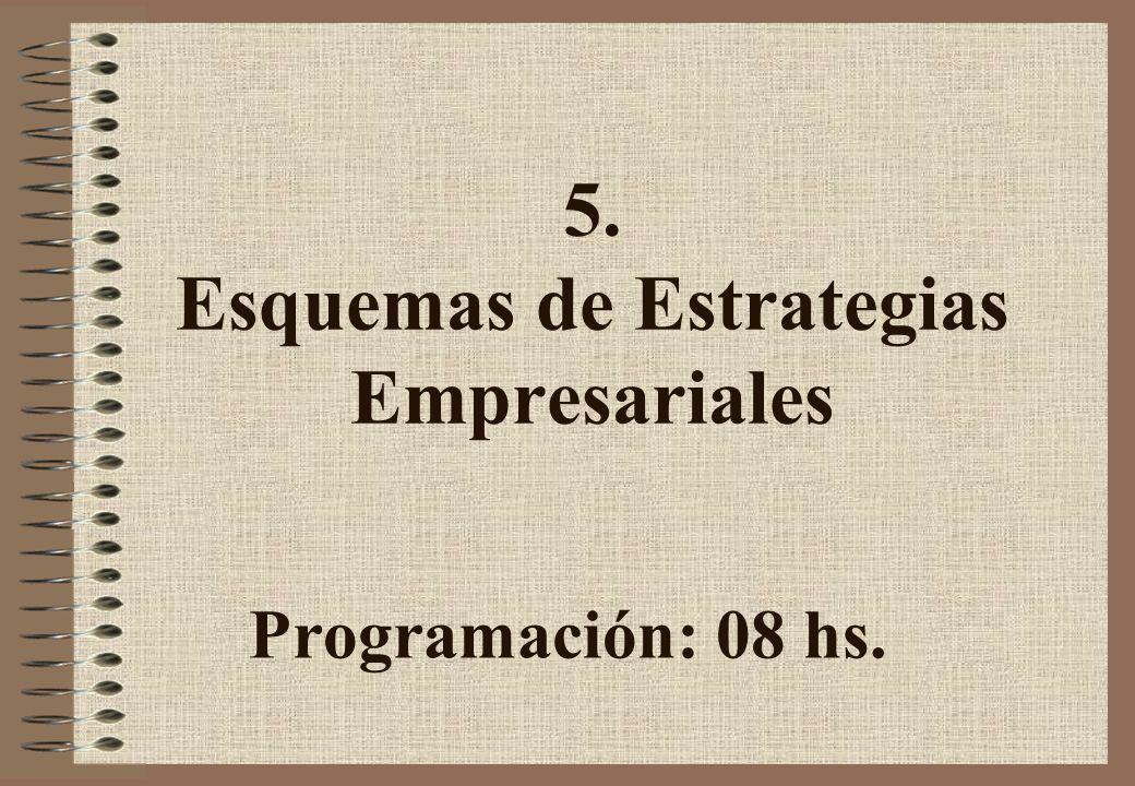5. Esquemas de Estrategias Empresariales
