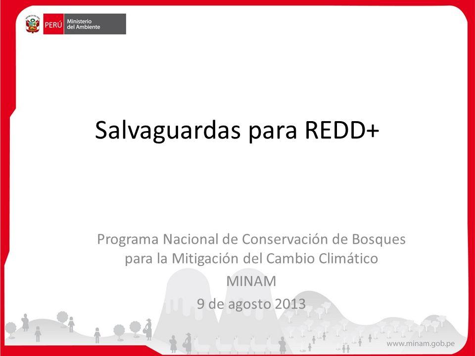 Salvaguardas para REDD+