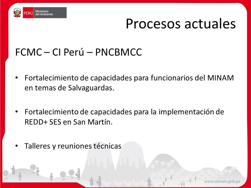Procesos actuales FCMC – CI Perú – PNCBMCC