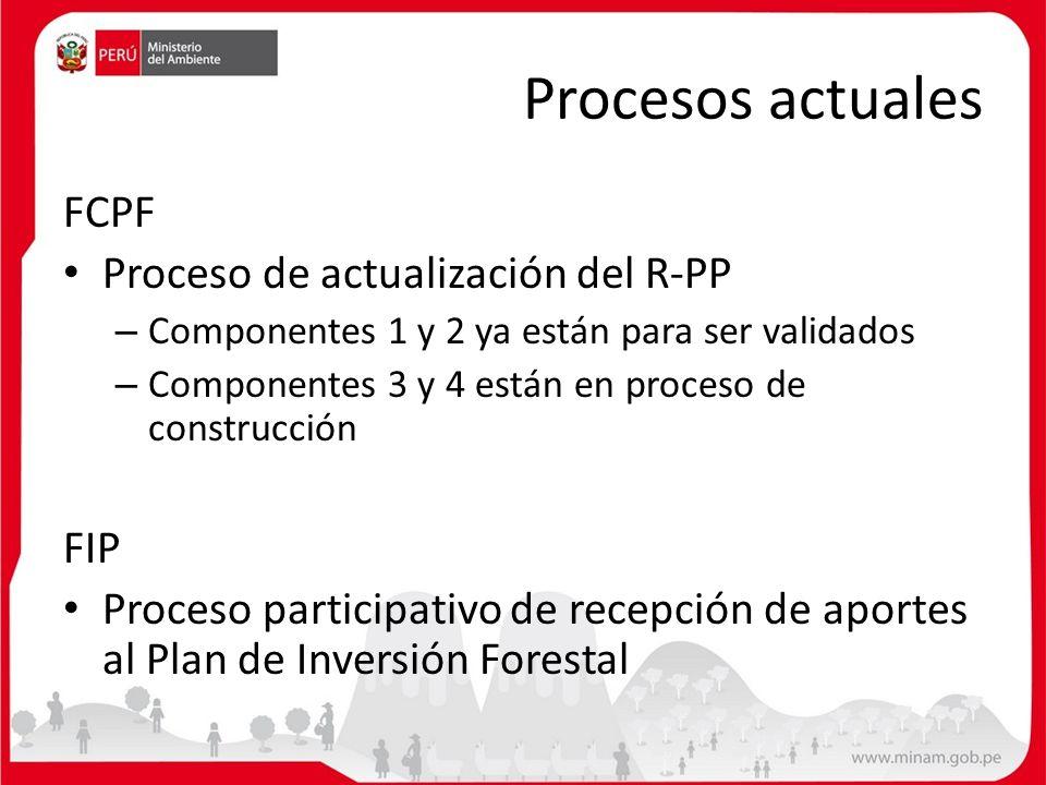 Procesos actuales FCPF Proceso de actualización del R-PP FIP