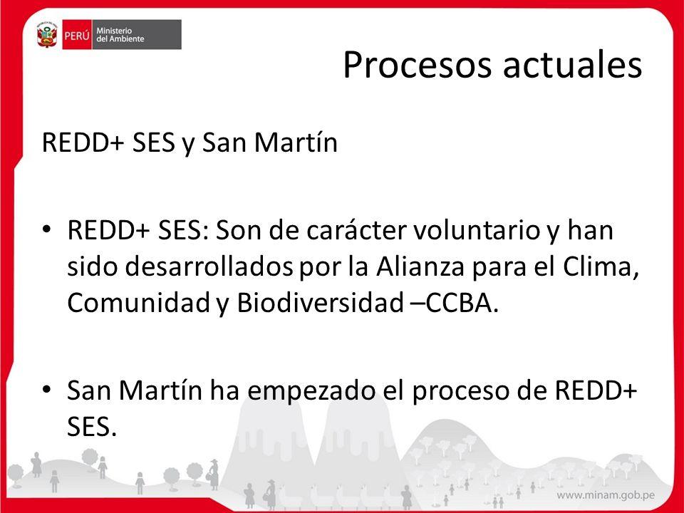 Procesos actuales REDD+ SES y San Martín