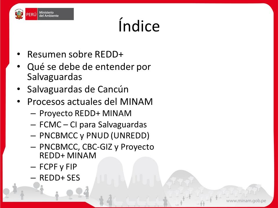 Índice Resumen sobre REDD+ Qué se debe de entender por Salvaguardas