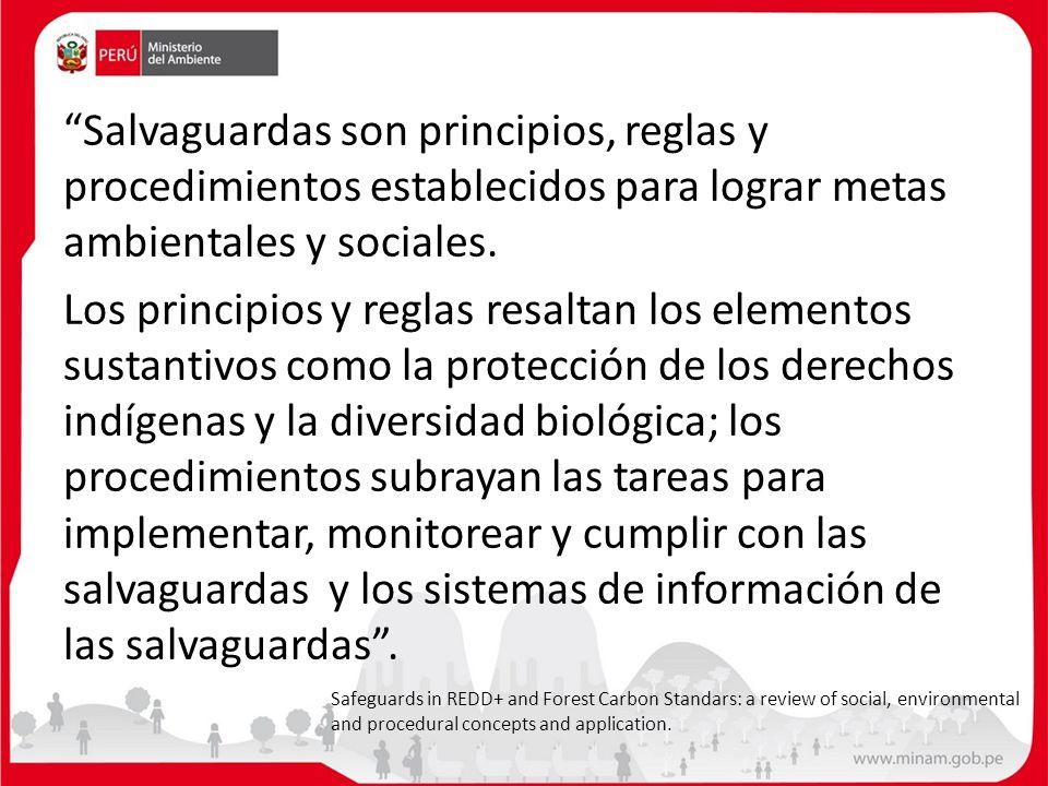 Salvaguardas son principios, reglas y procedimientos establecidos para lograr metas ambientales y sociales.