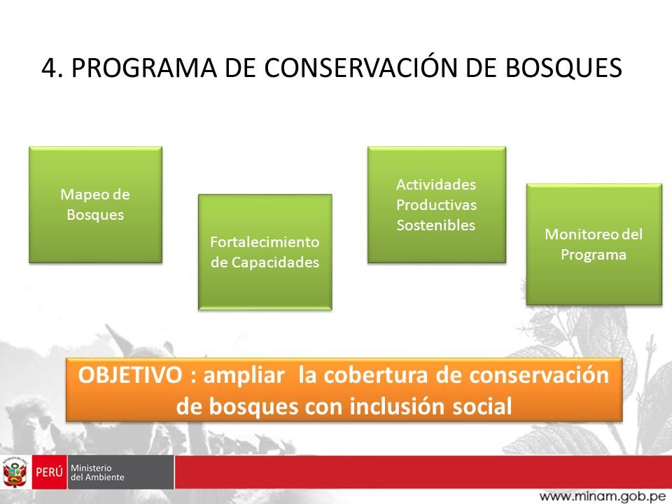 4. PROGRAMA DE CONSERVACIÓN DE BOSQUES