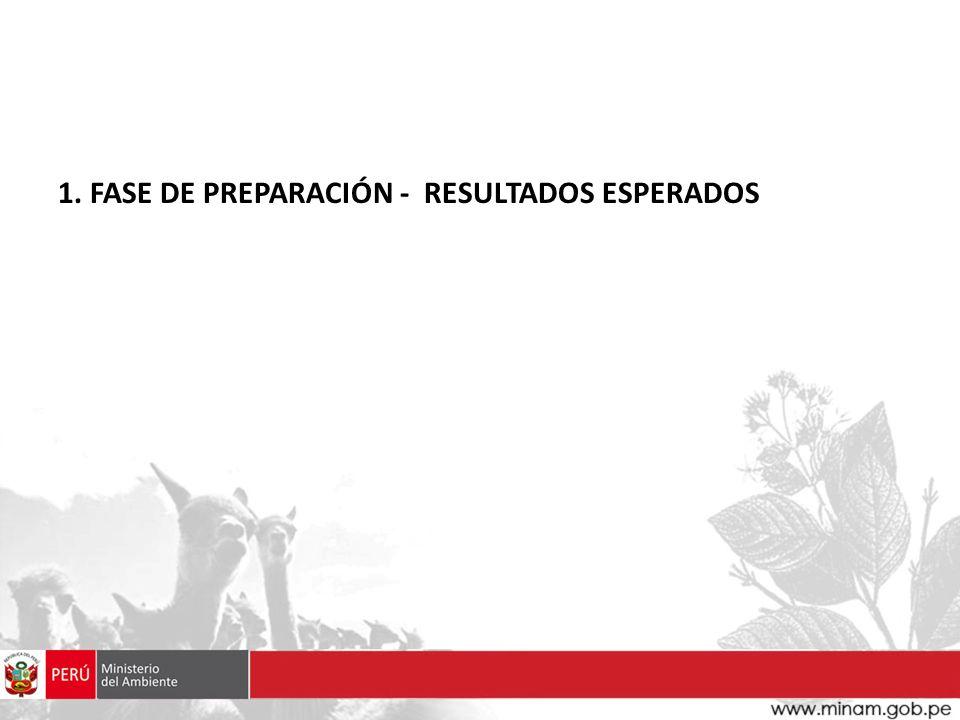 1. FASE DE PREPARACIÓN - RESULTADOS ESPERADOS