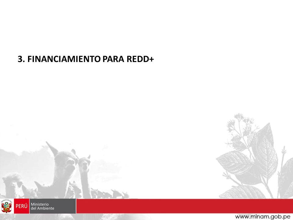 3. FINANCIAMIENTO PARA REDD+