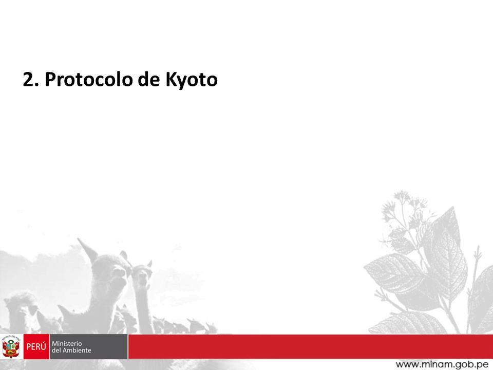2. Protocolo de Kyoto