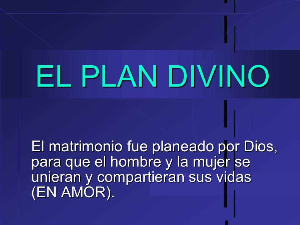 EL PLAN DIVINOEl matrimonio fue planeado por Dios, para que el hombre y la mujer se unieran y compartieran sus vidas (EN AMOR).