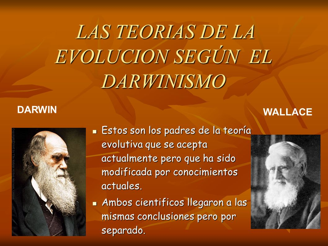 LAS TEORIAS DE LA EVOLUCION SEGÚN EL DARWINISMO