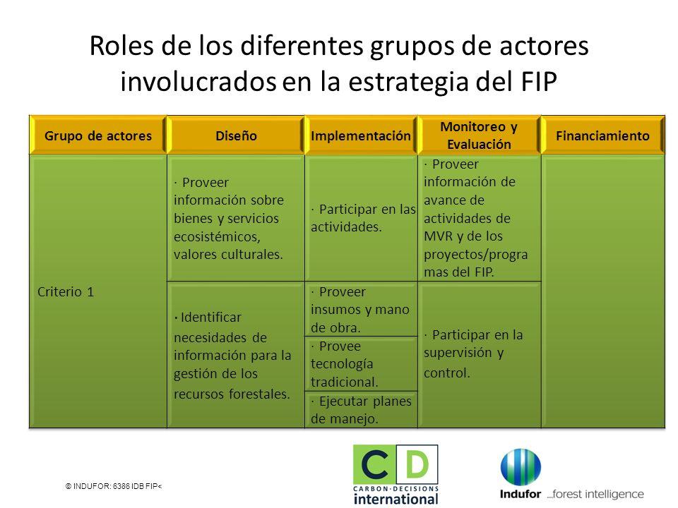 Roles de los diferentes grupos de actores involucrados en la estrategia del FIP