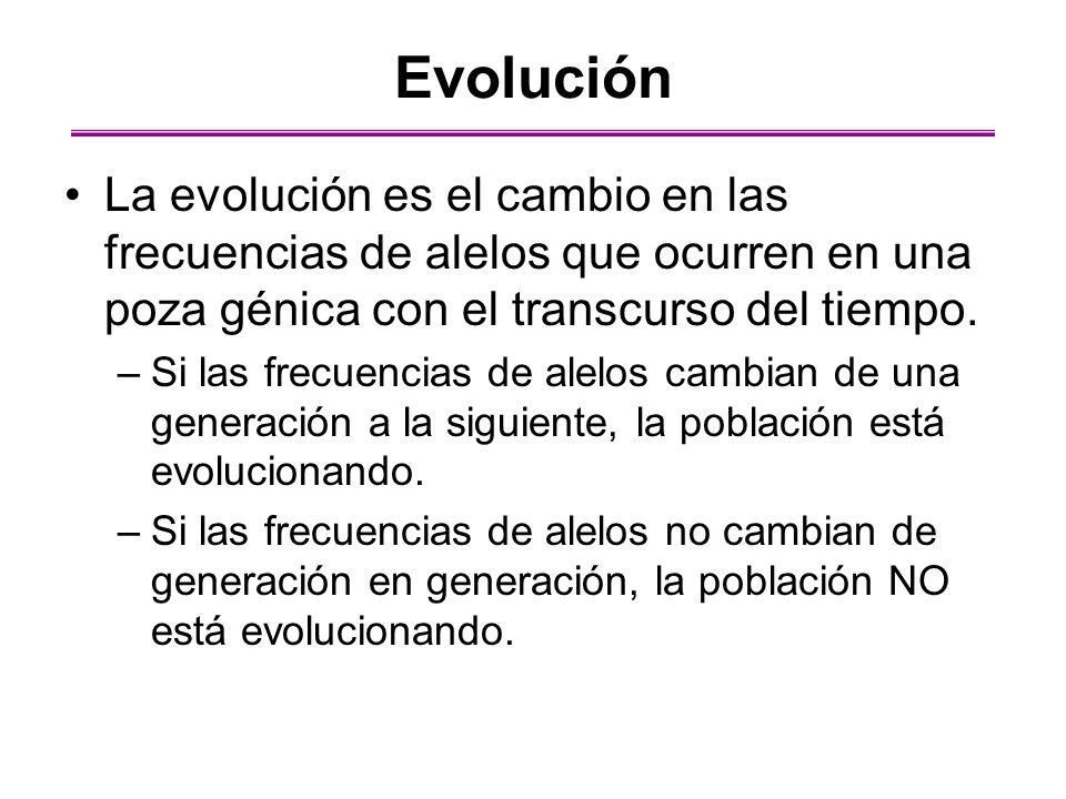 Evolución La evolución es el cambio en las frecuencias de alelos que ocurren en una poza génica con el transcurso del tiempo.