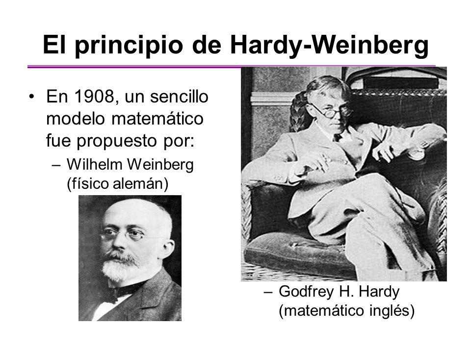 El principio de Hardy-Weinberg