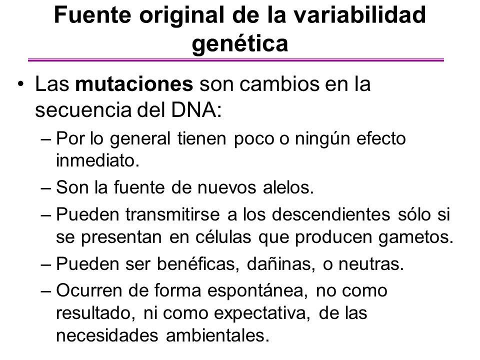 Fuente original de la variabilidad genética