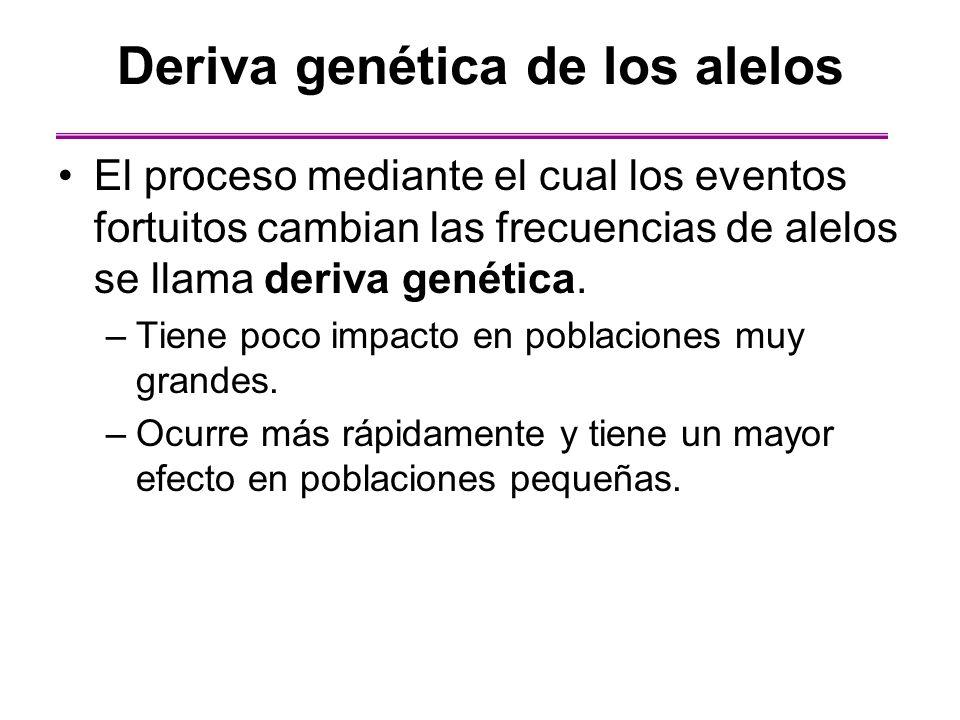 Deriva genética de los alelos