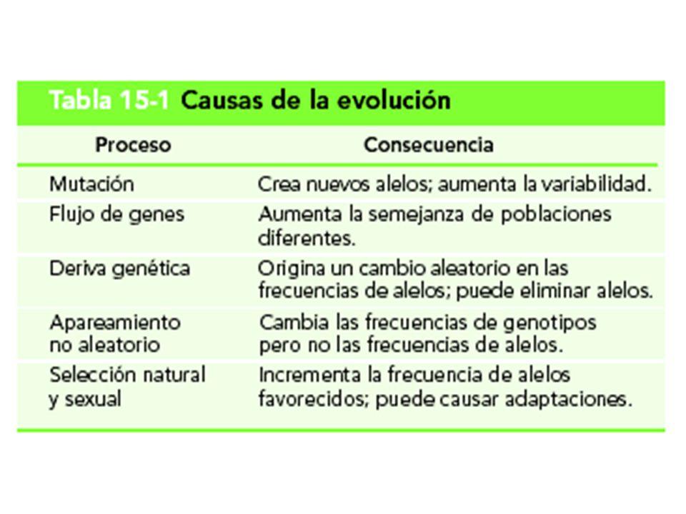 Tabla 15-1 Causas de la evolución