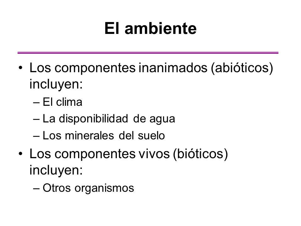 El ambiente Los componentes inanimados (abióticos) incluyen: