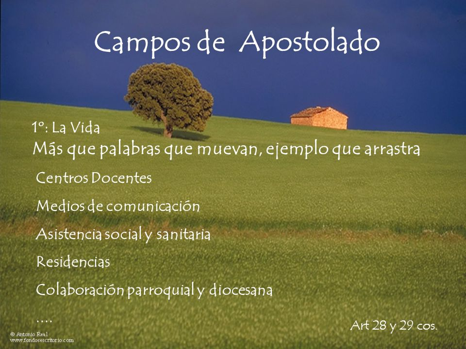 Campos de Apostolado Más que palabras que muevan, ejemplo que arrastra