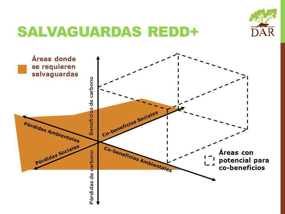 SALVAGUARDAS REDD+ Áreas donde se requieren salvaguardas