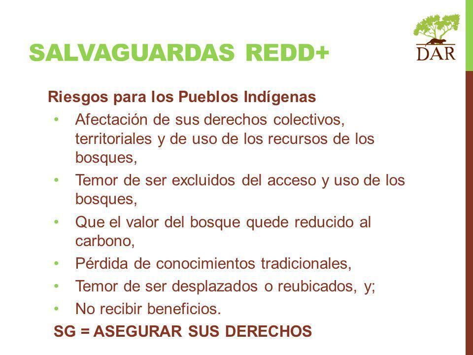 SALVAGUARDAS REDD+ Riesgos para los Pueblos Indígenas