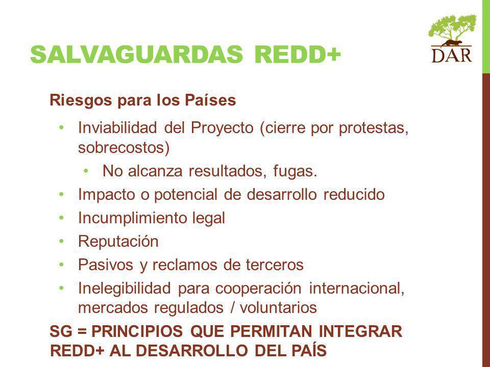SALVAGUARDAS REDD+ Riesgos para los Países
