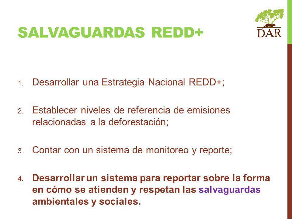 SALVAGUARDAS REDD+ Desarrollar una Estrategia Nacional REDD+;