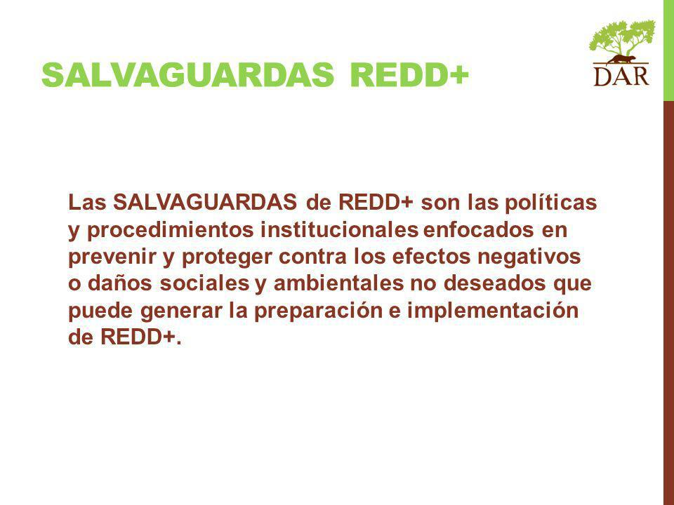 SALVAGUARDAS REDD+
