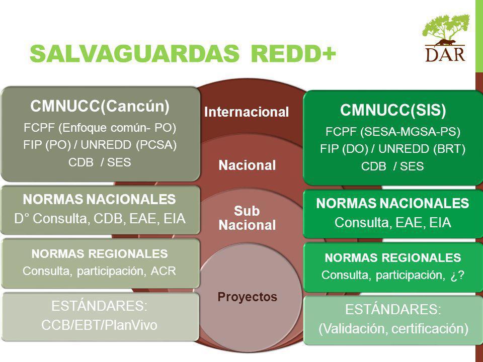 SALVAGUARDAS REDD+ CMNUCC(Cancún) CMNUCC(SIS) Internacional Nacional