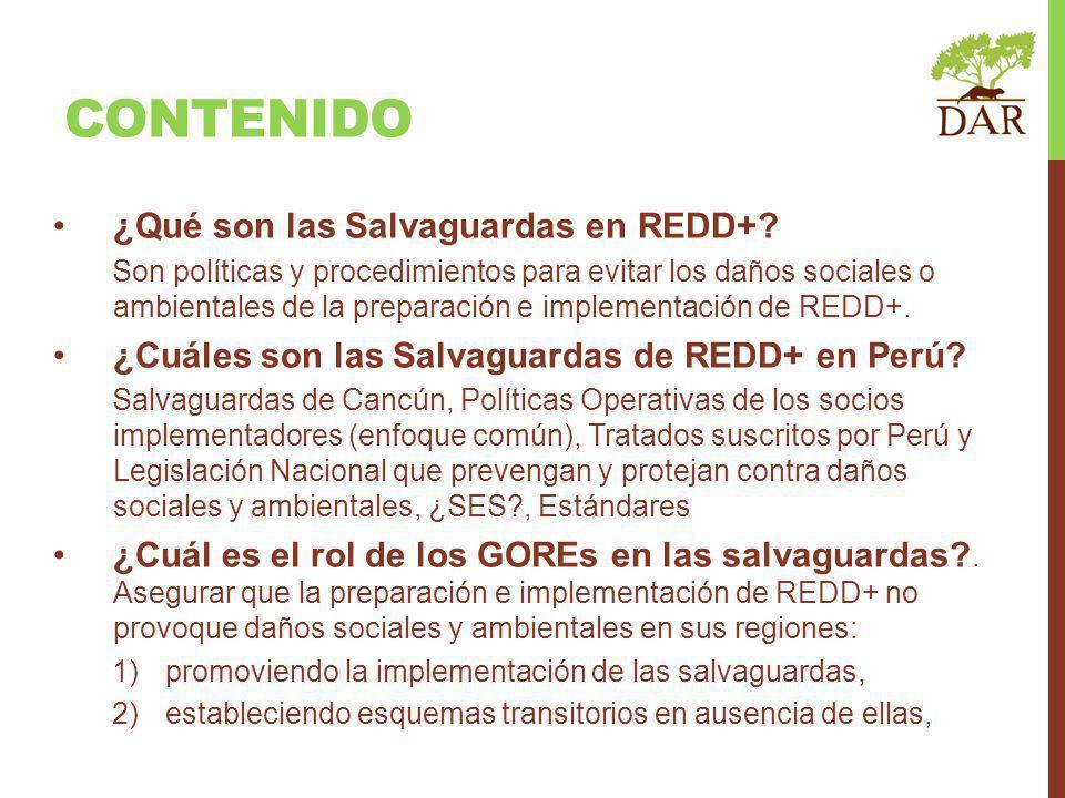 Contenido ¿Qué son las Salvaguardas en REDD+