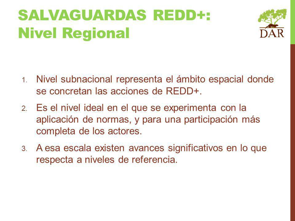 SALVAGUARDAS REDD+: Nivel Regional