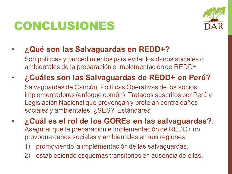 CONCLUSIONES ¿Qué son las Salvaguardas en REDD+