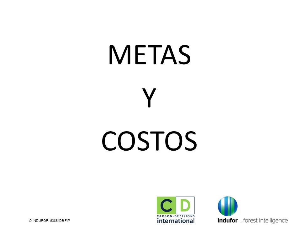 METAS Y COSTOS © INDUFOR: 6386 IDB FIP