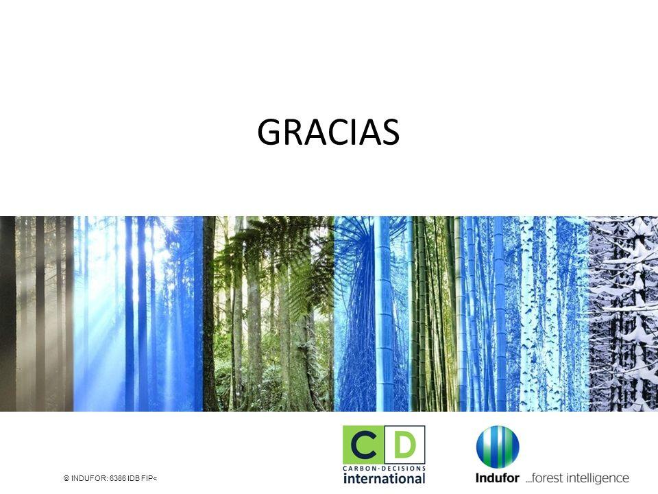 GRACIAS © INDUFOR: 6386 IDB FIP<